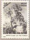 Indian Flowering Trees